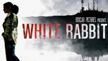 White Rabbit - Featured Image